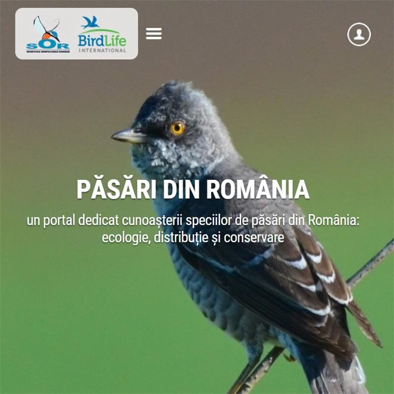 Pasarile din Romania