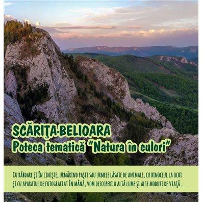 Poteca tematica Natura in Culori - Scarita - Belioara