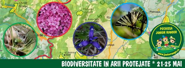 <span>Biodiversitate in arii protejate</span>