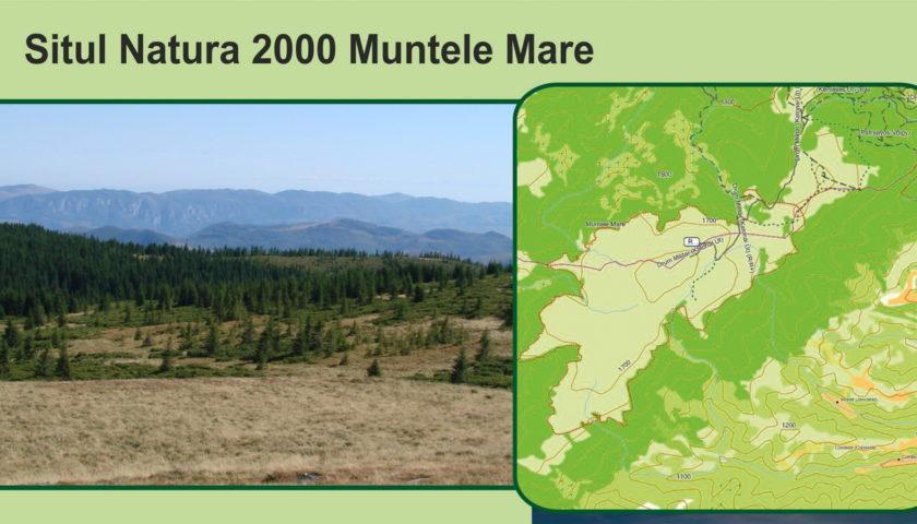 <span>Muntele Mare</span>