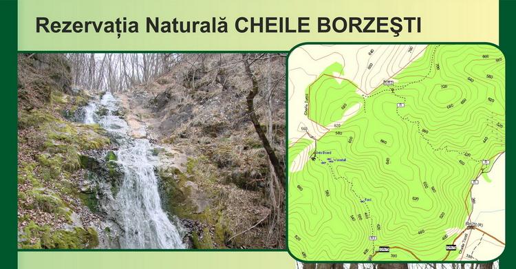 <span>Cheile Borzesti</span>