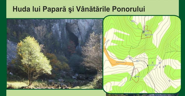 <span>Huda lui Papara si Vanatarea</span>