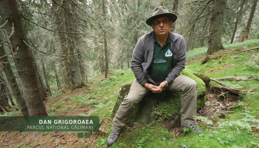 <span>Despre meseria de ranger cu Dan Grigoroaea</span>