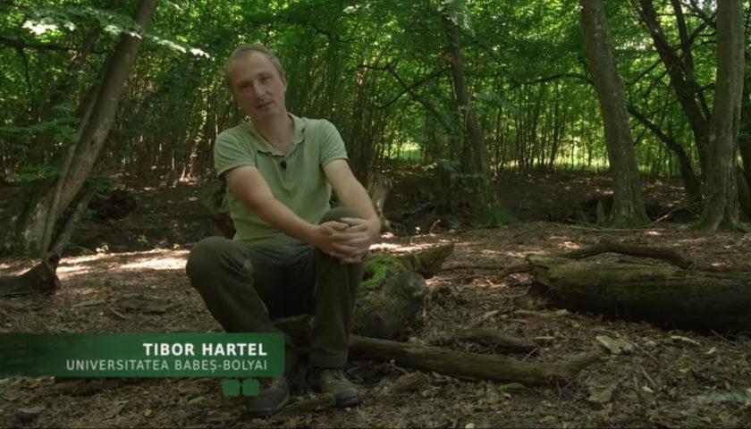 <span>Cu Tibor Hartel despre cercetarea în domeniul protecției naturii</span>