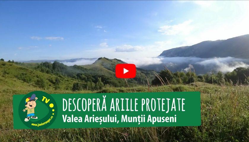 <span>Descoperă ariile protejate de pe Valea Arieșului (Video)</span>