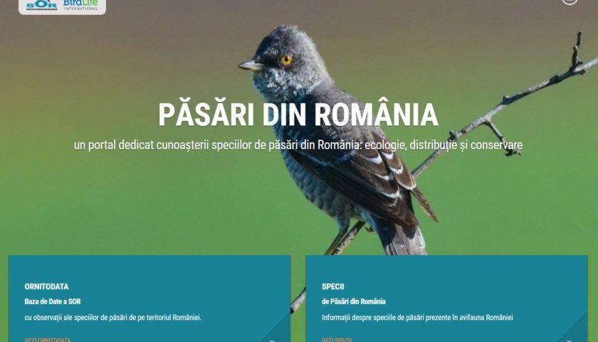 <span>Păsări din România (SOR)</span>