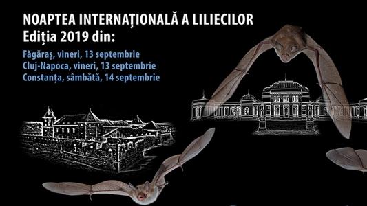 <span>Noaptea Internațională a Liliecilor 2019</span>