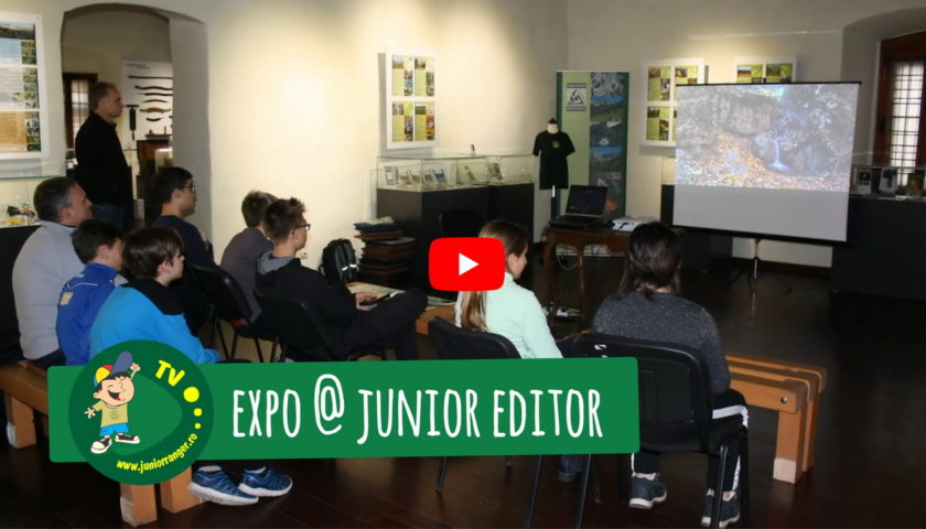 <span>Junior Expo (video)</span>