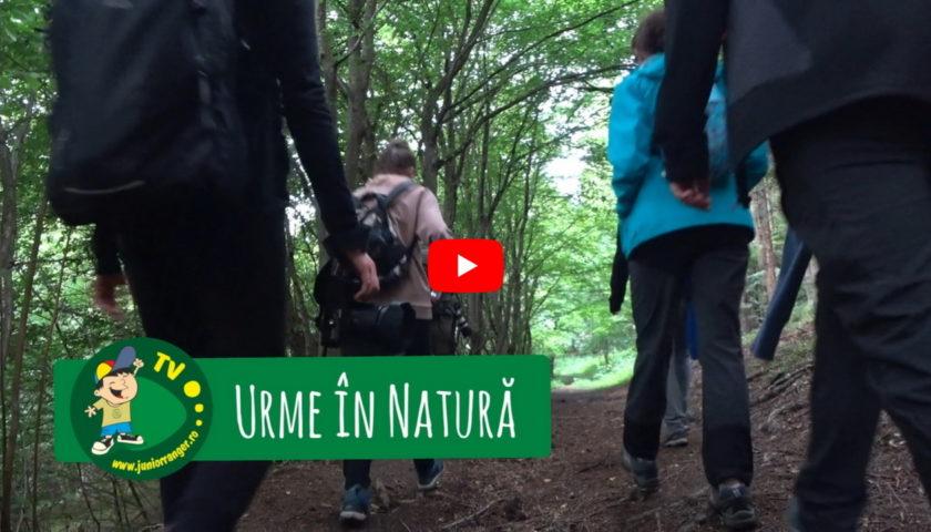<span>Urme în natură (video)</span>
