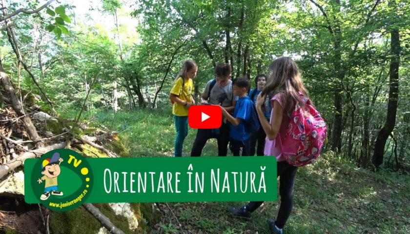 <span>Orientare în natură (video)</span>