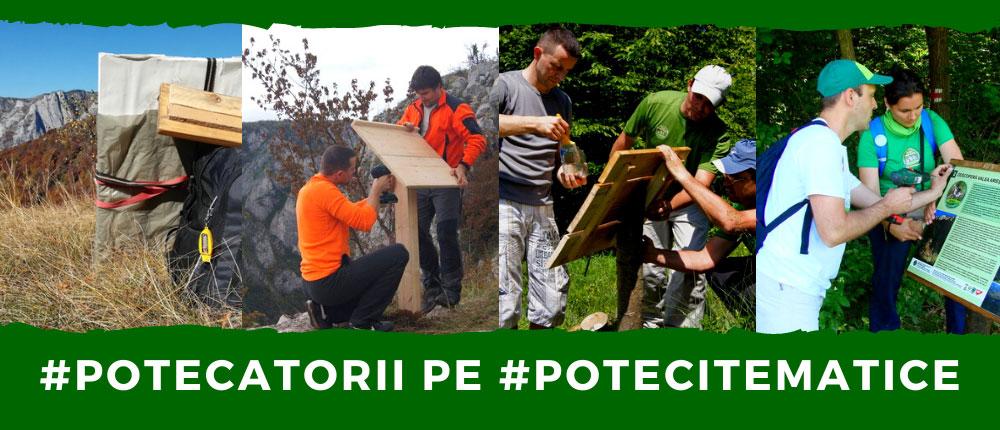 Potecatorii - Voluntariat pentru natură