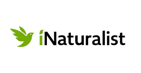 <span>iNaturalist – Connect with Nature!</span>